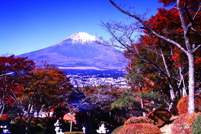 令和元年11月の富士(21)御殿場平和公園からの富士_e0344396_21245806.jpg