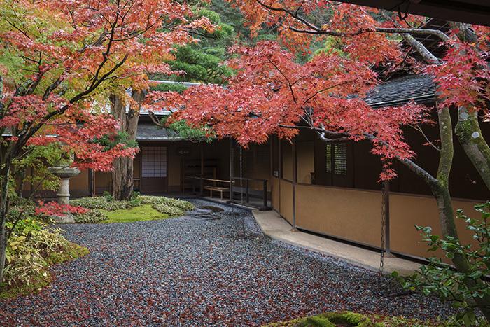 鎌倉・一条恵観山荘の紅葉①_b0145398_22325795.jpg