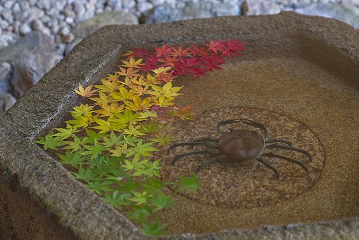 鎌倉・一条恵観山荘の紅葉②_b0145398_22444704.jpg