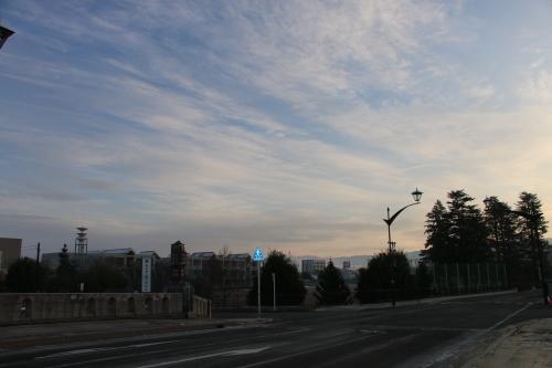 朝の散歩 2019.12.1_c0075701_09002379.jpg
