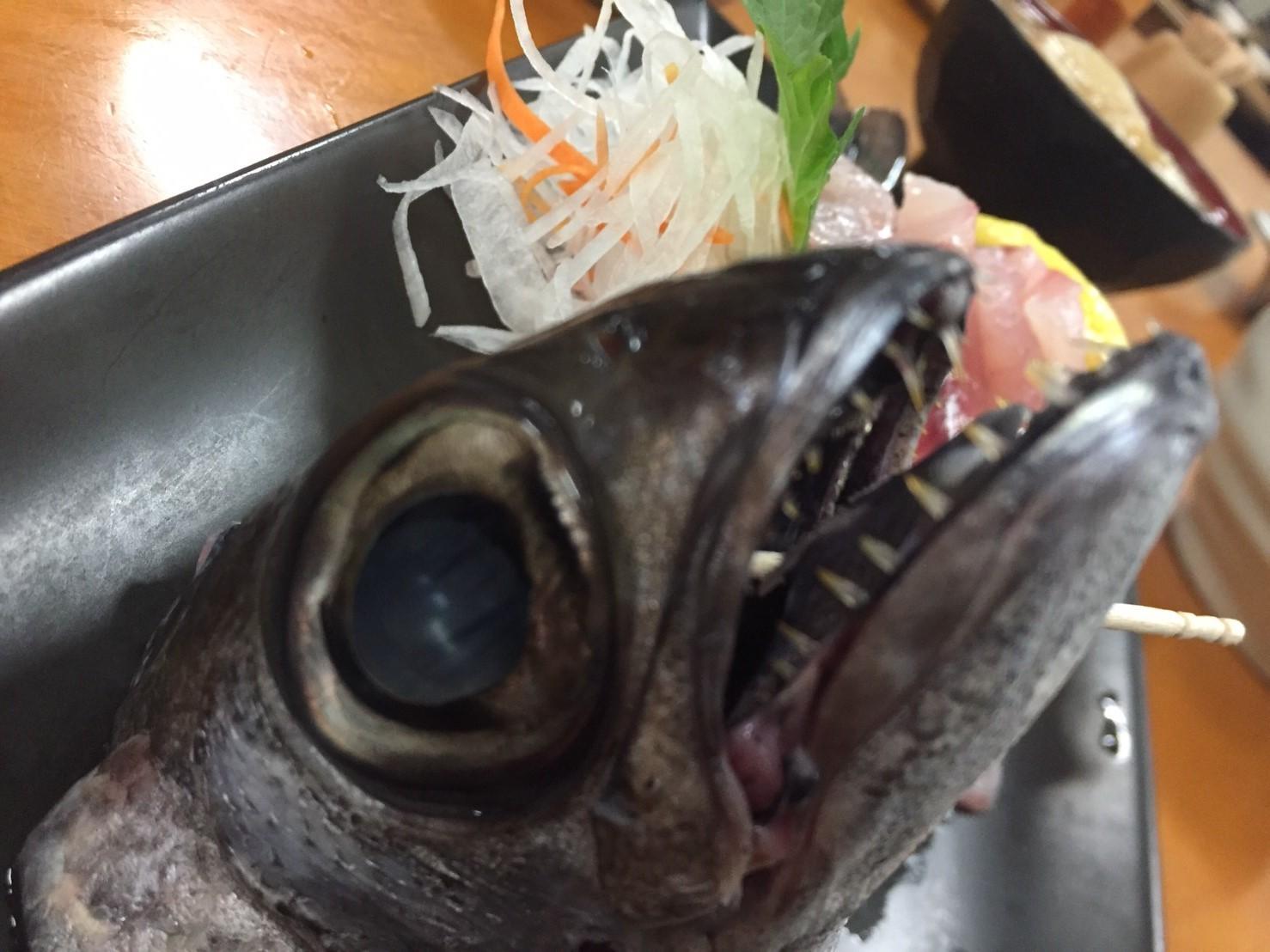 おはよう堂  黒ムツ・ネギトロ丼_e0115904_15450135.jpg