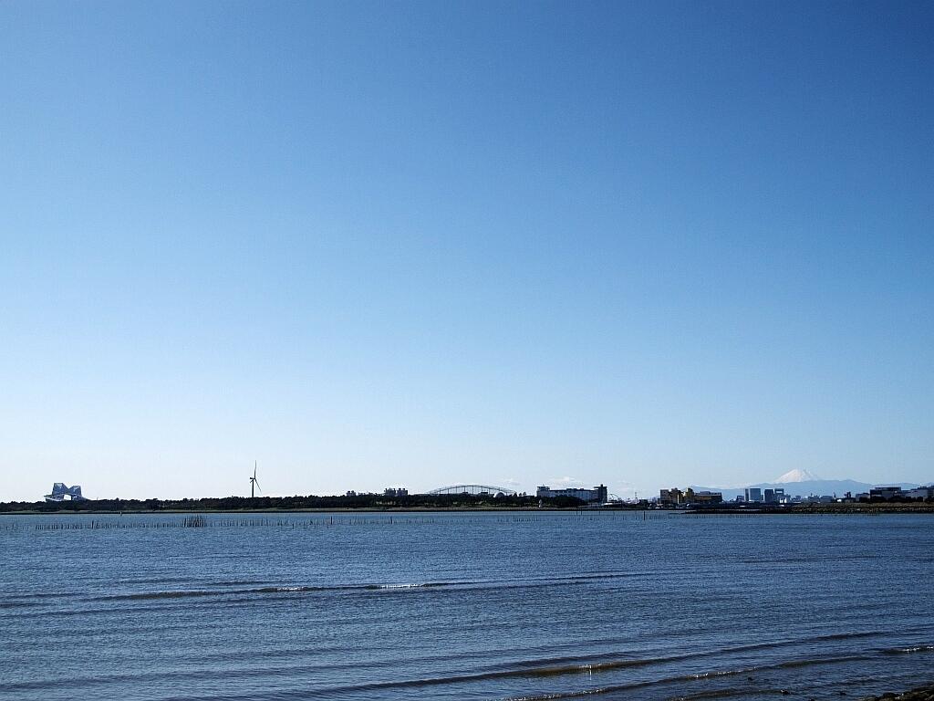 葛西臨海公園_e0364711_20465508.jpg