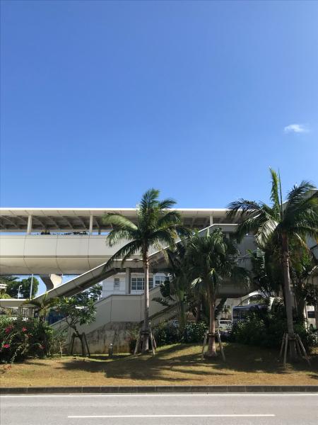 2019 沖縄の旅 1 @ cafe Vegetarica_b0157216_14333968.jpg