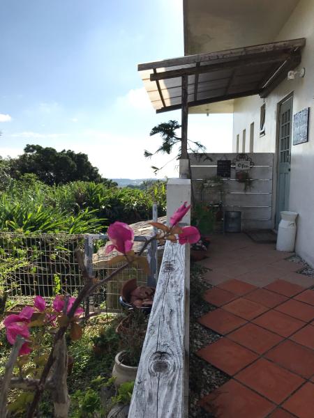 2019 沖縄の旅 1 @ cafe Vegetarica_b0157216_14365001.jpg