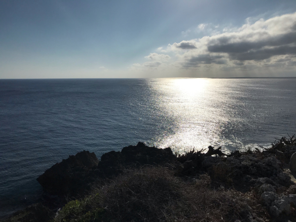 2019 沖縄の旅 1 @ cafe Vegetarica_b0157216_14384107.jpg