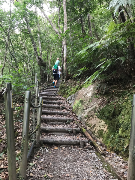 2019 沖縄の旅 3 @ 比地大滝_b0157216_14572147.jpg