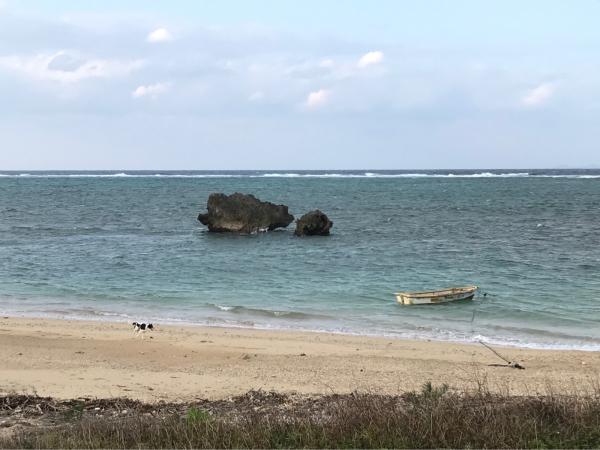 2019 沖縄の旅 7 @ 浜辺にて_b0157216_15235907.jpg