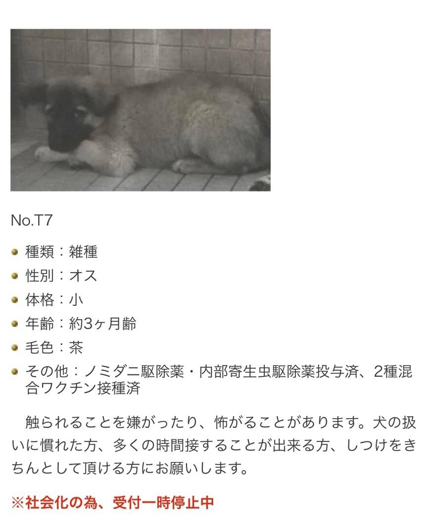 師走_b0207320_16490643.jpeg