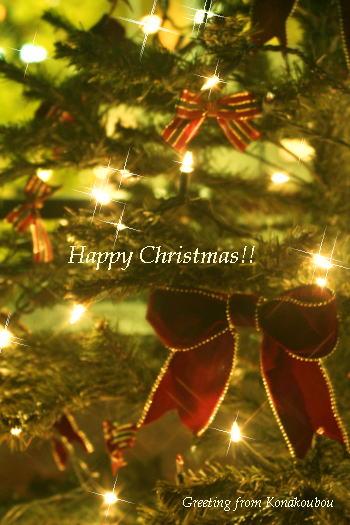 どんなクリスマスでしたか?_a0392423_09153029.jpg