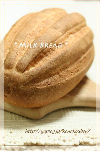 うりぼうパン。_a0392423_09180579.jpg