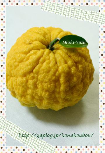 獅子柚子でジャム。_a0392423_09180602.jpg