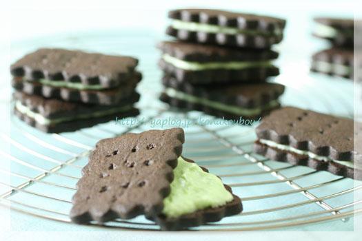 7月のお菓子「チョコミントクッキー」_a0392423_10072979.jpg