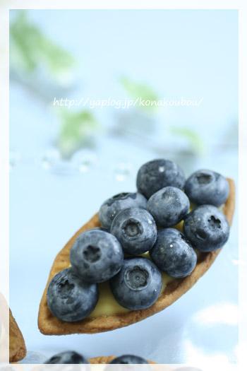 7月のお菓子・ブルーベリーのタルト_a0392423_23170735.jpg