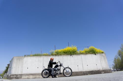 日景 正和 & Harley-Davidson FXSB(2019.04.29/YAMAGATA)_f0203027_14190037.jpg