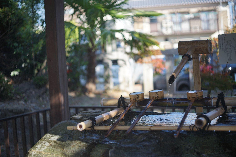 スーパーキヤノマチック R 50mmF1.8 で 熊野町へ_b0069128_15025501.jpg