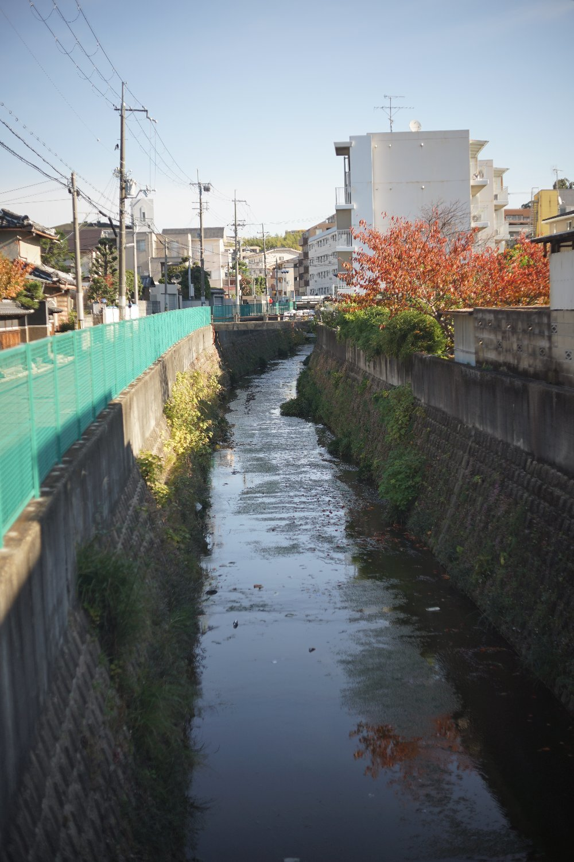 スーパーキヤノマチック R 50mmF1.8 で 熊野町へ_b0069128_15030836.jpg