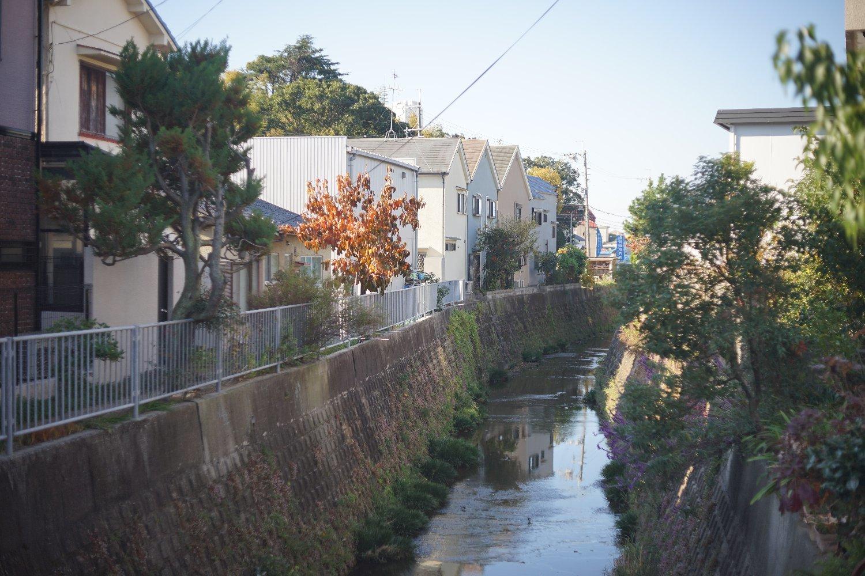 スーパーキヤノマチック R 50mmF1.8 で 熊野町へ_b0069128_15032269.jpg