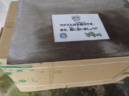 いすみ健康マラソン_a0123836_17134979.jpg