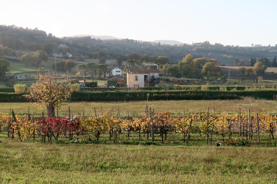 紅葉の美しい村の城壁めぐり、ベヴァンニャ_f0234936_8333514.jpg
