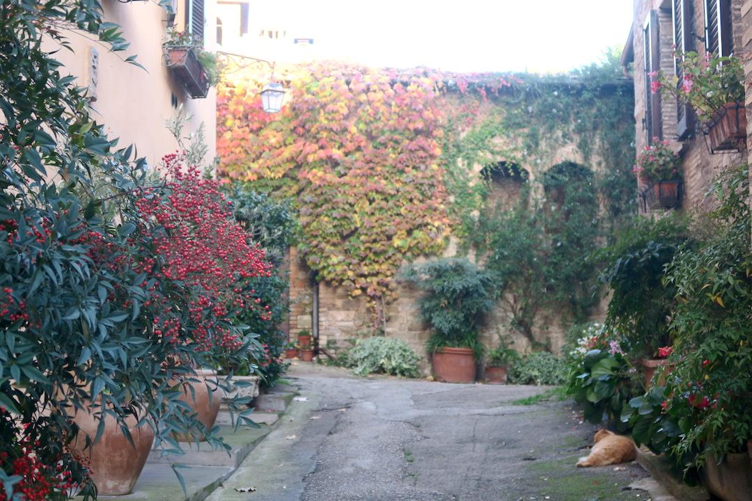 紅葉の美しい村の城壁めぐり、ベヴァンニャ_f0234936_8363524.jpg
