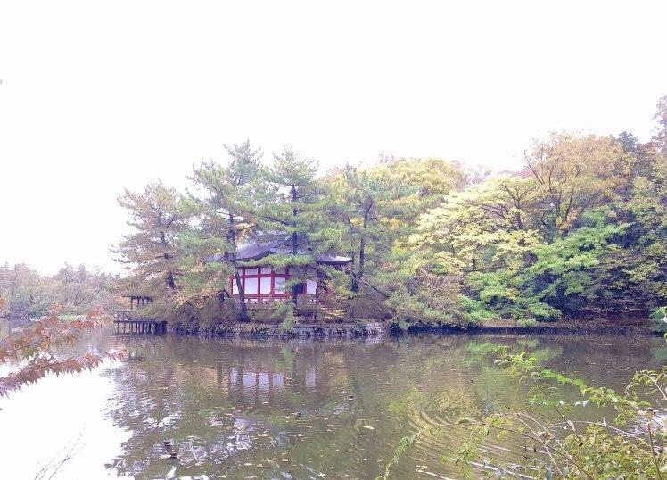 紅葉の石神井公園で撮影していただいたときのおはなし~奇跡のような光に恵まれて…。^^~_b0298740_23270195.jpg