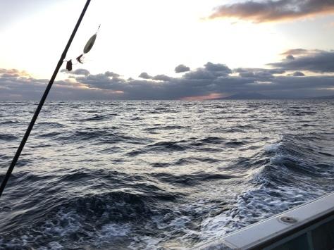釣り 北海道 2019 鮭
