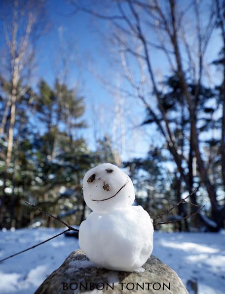 冬だった_b0130243_22133463.jpg