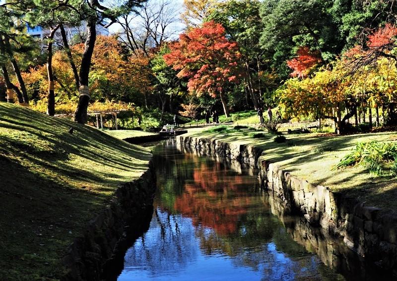 秋たけなわの小石川後楽園 ☆_d0146247_16561133.jpg