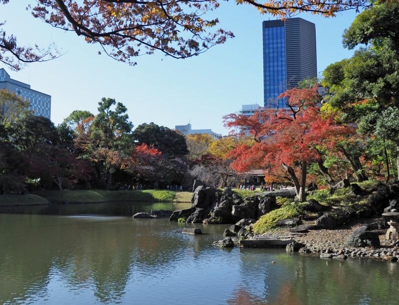 秋たけなわの小石川後楽園 ☆_d0146247_16565964.jpg