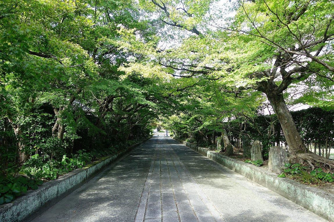 瑞雲山  龍福寺_c0112559_08035885.jpg