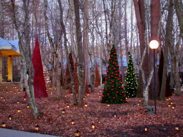 ①星降る森のクリスマス・2019 * 軽井沢 ホテルブレストンコート・館内装飾☆_f0236260_23455647.jpg