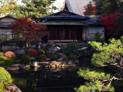 『亮先生の風水茶会』ご報告と紅葉の坐禅の会_b0153663_15590605.jpeg