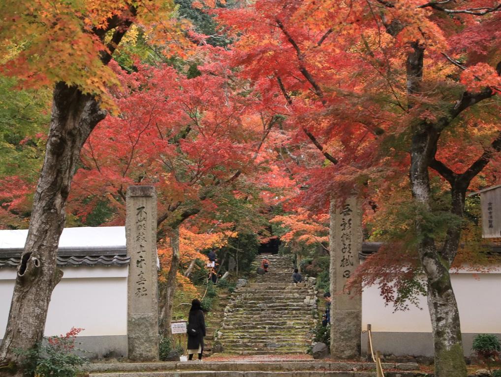 2019年 秋 阪急嵐山沿線・・_d0202264_420772.jpg
