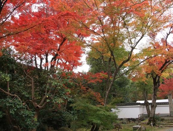 2019年 秋 阪急嵐山沿線・・_d0202264_4211291.jpg