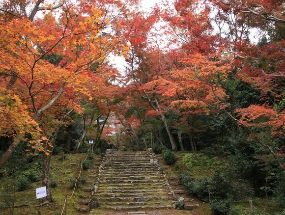 2019年 秋 阪急嵐山沿線・・_d0202264_4215685.jpg