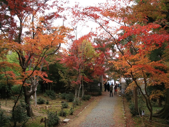 2019年 秋 阪急嵐山沿線・・_d0202264_4232299.jpg