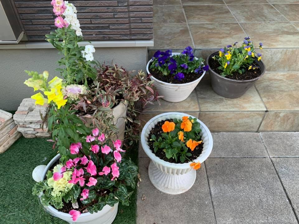 お花が綺麗よ~_e0040673_14224040.jpg