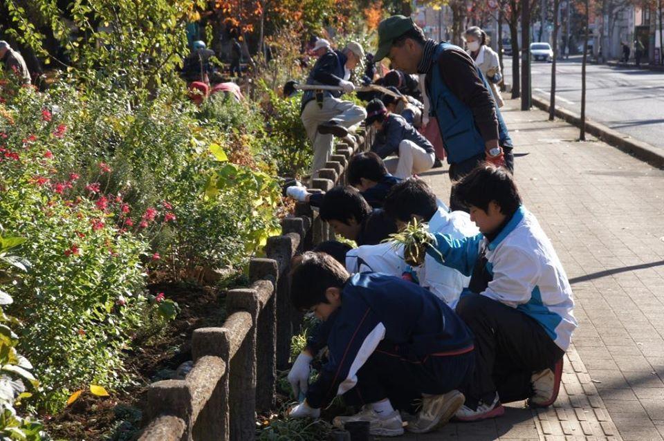 花植えイベント2日間~福岡中央公園~_a0107574_19321288.jpg