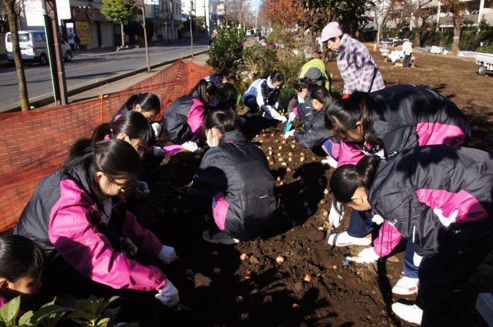 花植えイベント2日間~福岡中央公園~_a0107574_19325795.jpg