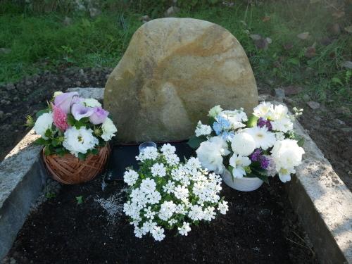 花いっぱいの猫楠舎_f0054677_09291857.jpeg
