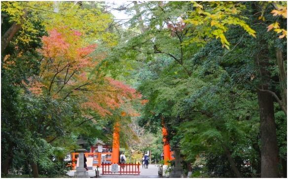 < 下賀茂神社 >_c0036080_21012869.jpg