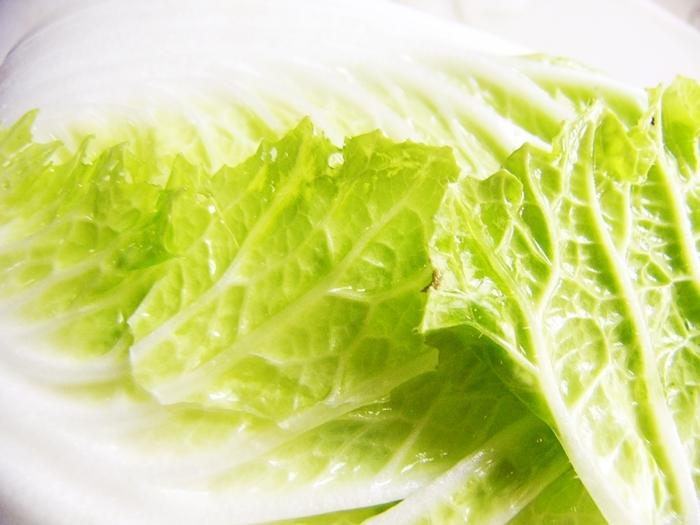 白菜が赤帯しめて店先にうっふんうっふん肩を並べる   俵万智_b0018682_23092757.jpg