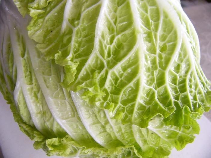 白菜が赤帯しめて店先にうっふんうっふん肩を並べる   俵万智_b0018682_23095020.jpg