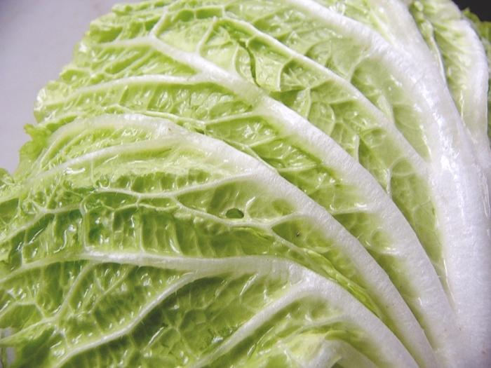 白菜が赤帯しめて店先にうっふんうっふん肩を並べる   俵万智_b0018682_23101911.jpg