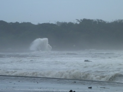 台風の直前準備_e0077899_1054010.jpg