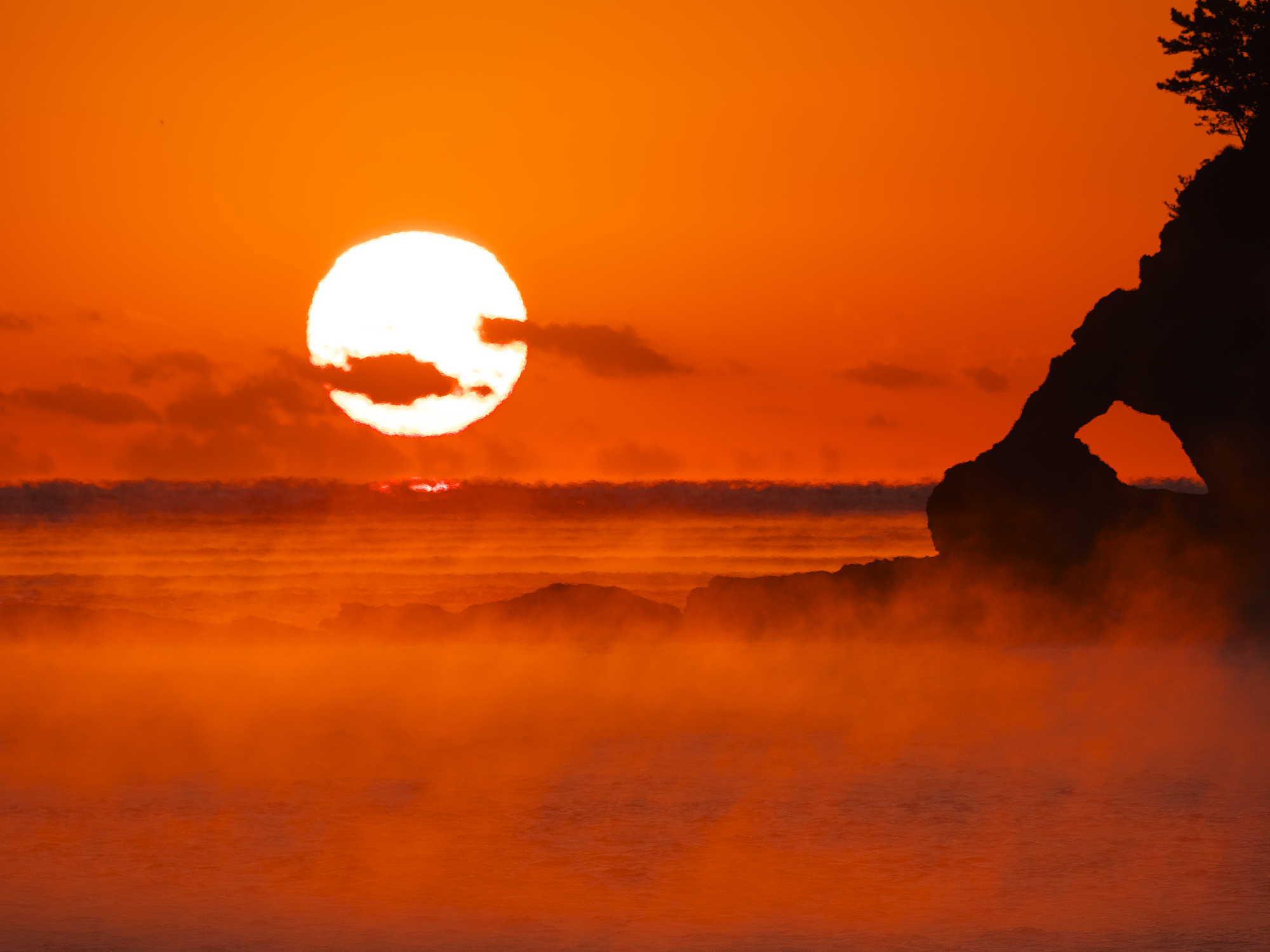 鯛島朝景_d0020300_20362124.jpg