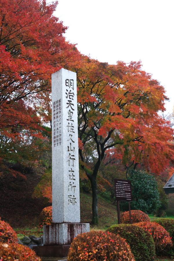 大田原市 御殿山公園の紅葉1_a0263109_19123683.jpg