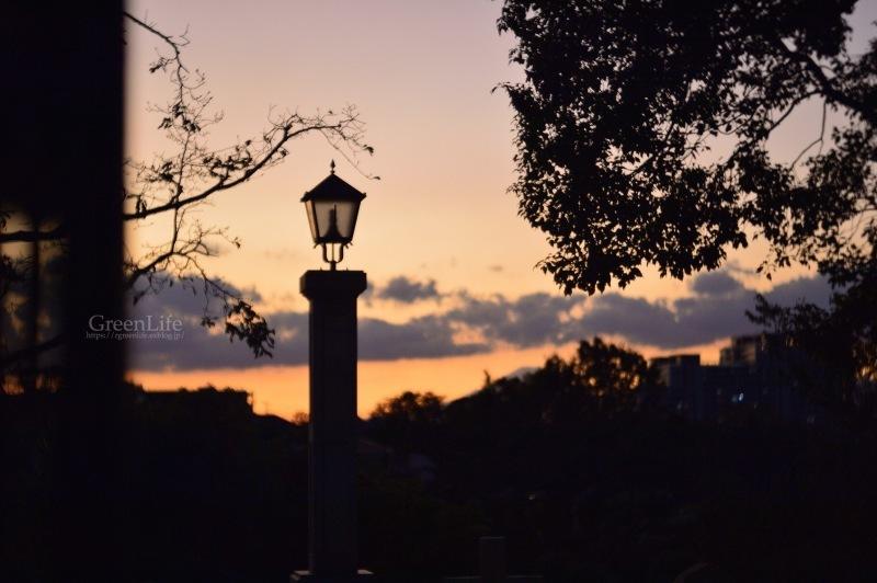 秋は夕暮れ_f0321522_12245272.jpg