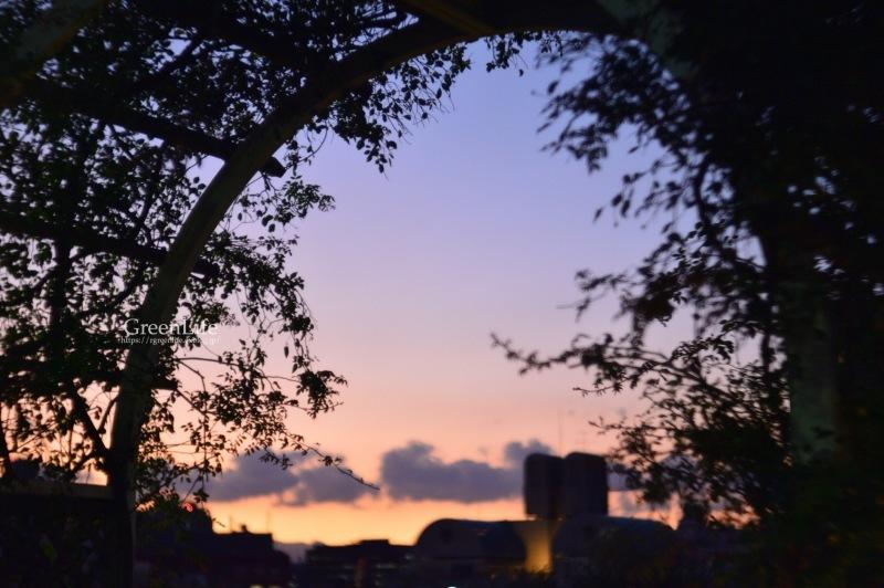 秋は夕暮れ_f0321522_12250254.jpg