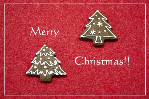 Merry Chiristmas !!_a0392423_00250421.jpg